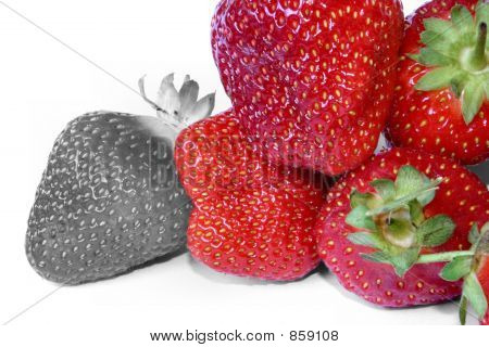 strawberry outcast 2