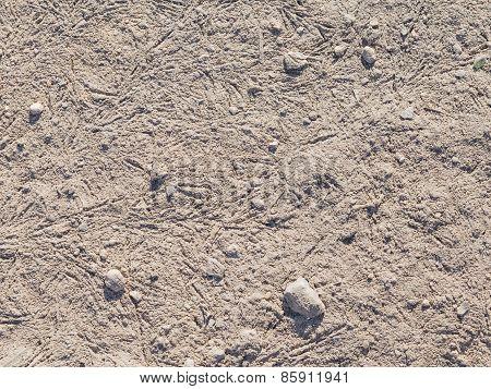 Gray Soil