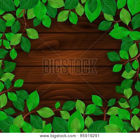 Green Leaves On Wood Background