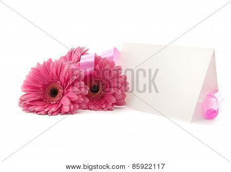 Flowers Gerbera, Ribbon And A Blank White Card, Isolated On A White Background.