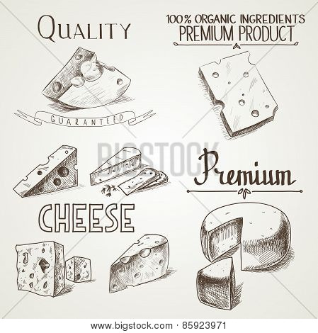 Hand drawn doodle sketch cheese with different premium quality types of cheeses in retro style styli