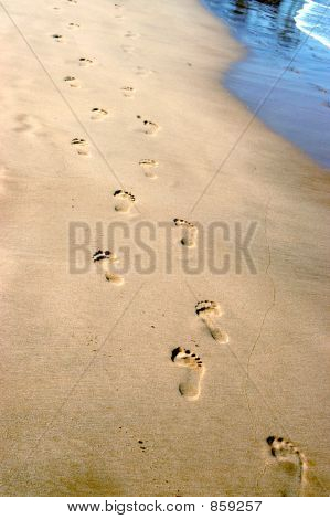 Footsteps to Follow