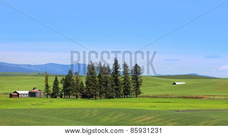 Beautiful farm landscape in South east Washington
