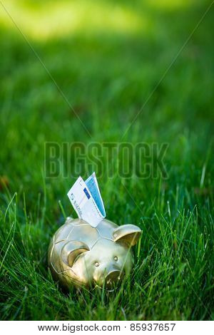 Piggy bank with euro on grass