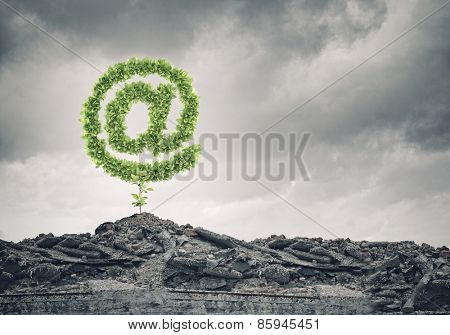 Conceptual image with at symbol growing on ruins