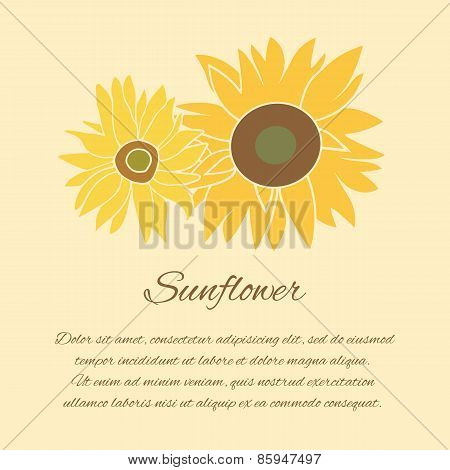 Sunflower vector greeting card on the bright background