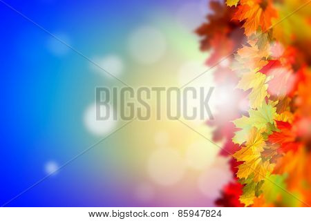 Background image with autumn leaves. Place for text
