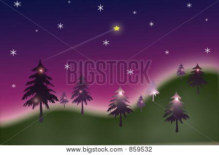 Bäume in violett weihnachten Nebel