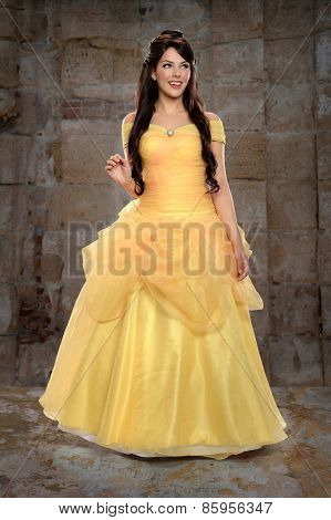 Portrait of beautiful young woman dressed in princess costume inside castle
