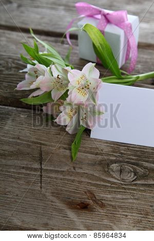 White Alstroemeria And Gifts
