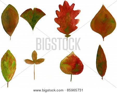 Set of red watercolor leaves
