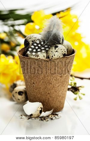 quail eggs in a flower pot and easter decorations