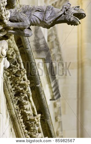 Foreground of a gargoyle in Cuenca Cathedral, Castilla la Mancha, Spain.