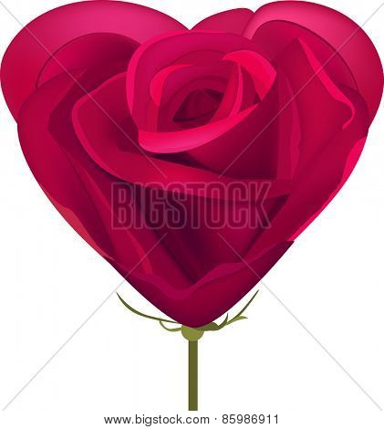 Heart made of red rose