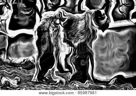 Black Gothic Dog