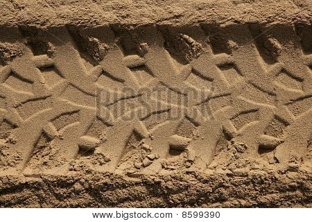 Quad Car Tires Footprint In Beach Sand