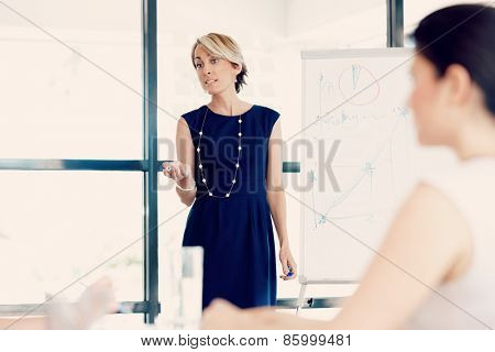 Businesswoman doing a presentaion in front of her collegues