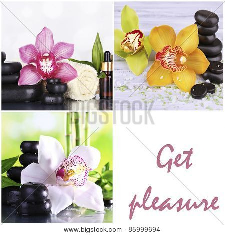 Orchid spa compositions in collage