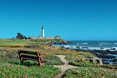stock photo of pigeon  - Pigeon Point lighthouse in Big Sur California - JPG