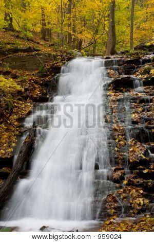 Waterfall And Foliage 002