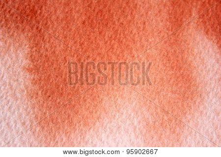 Macro Burnt Orange Watercolor  3