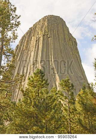 Devils Tower Peeking Out From The Pines