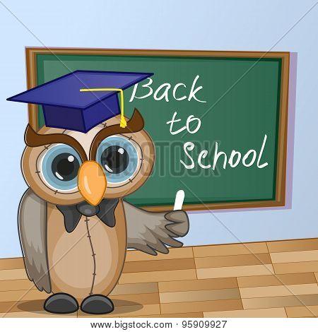 Cartoon Owl Wrote In Classroom