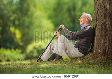 Senior gentleman sitting by a tree in a park and holding a cane on a beautiful summer day