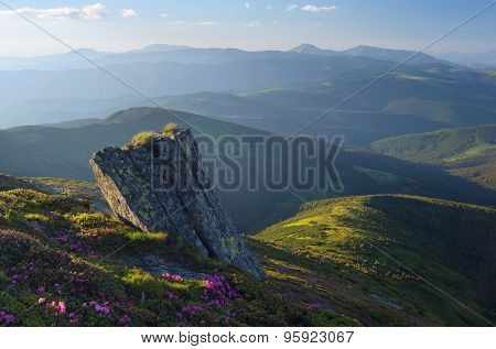 Beautiful rock in the mountains in summer. The landscape evening sun