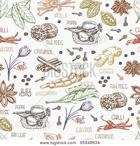 Seamless pattern with multi-colored spices on white background