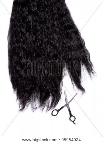 Long black curly hair with professional scissors, isolated on white background