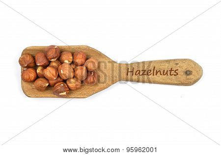 Hazelnuts On Shovel
