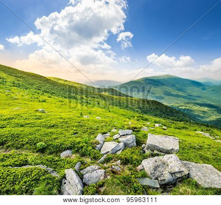 Hillside With White Stones At Sunrise