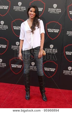 LOS ANGELES - JUL 14:  Sofia Pernas at the Warner Bros. Studio Tour Hollywood Expansion Official Unveiling, Stage 48: Script To Screen at the Warner Brothers Studio on July 14, 2015 in Burbank, CA