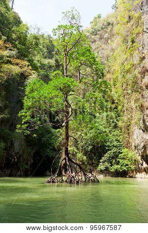 Pang Nga Bay, Thailand