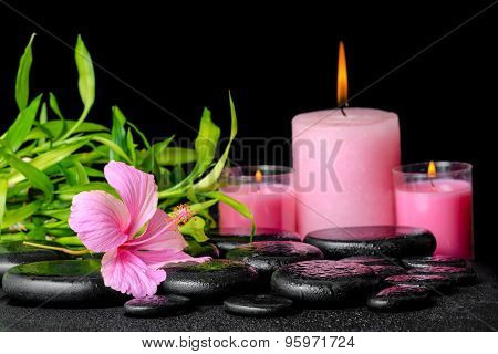 Beautiful Spa Composition Of Pink Hibiscus Flower, Twigs Bamboo And Candle On Zen Basalt Stones With