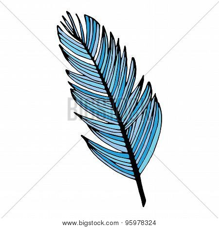 Blue writing feather