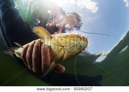 Underwater shot of the fisherman holding the fish