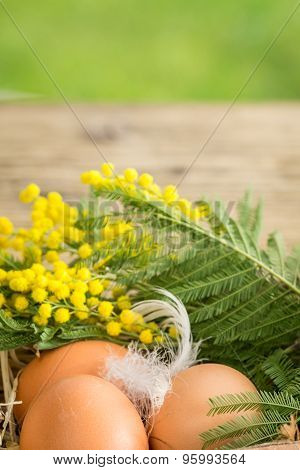 easter egg decoration macro