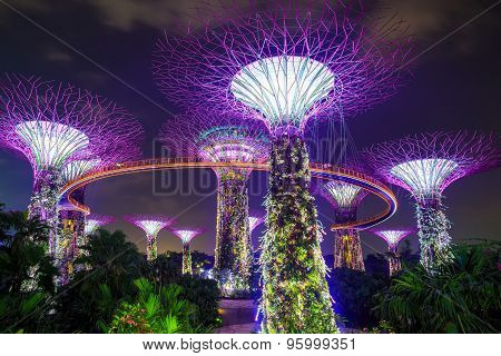 Magic garden at night, Singapore
