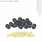 foto of carbohydrate  - Healthcare Concept Illustration of Black Bean with Vitamin B Protein Minerals and Carbohydrates Tablet Essential Nutrient for Lift - JPG