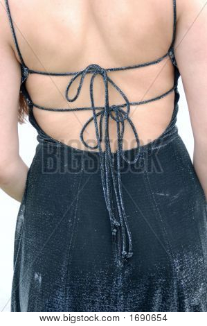 The Backview Of The Gown
