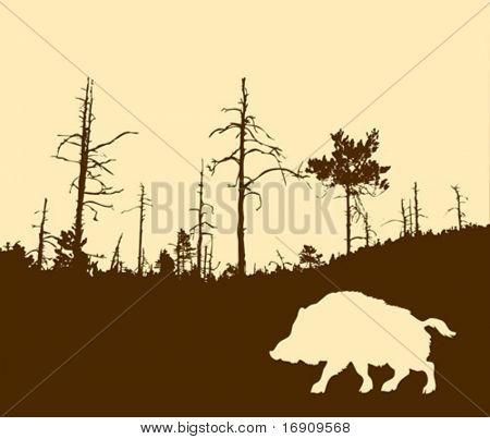 vector silhouette of the wild boar