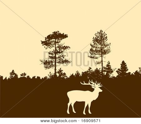 vector silhouette of the deer
