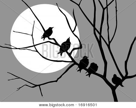 illustration migrating starling on branch tree