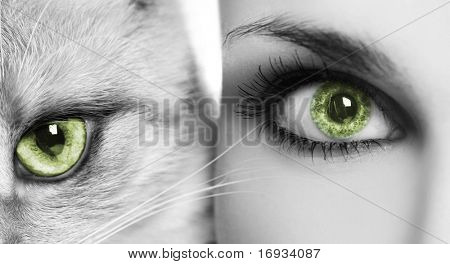 woman and cat with green eyes