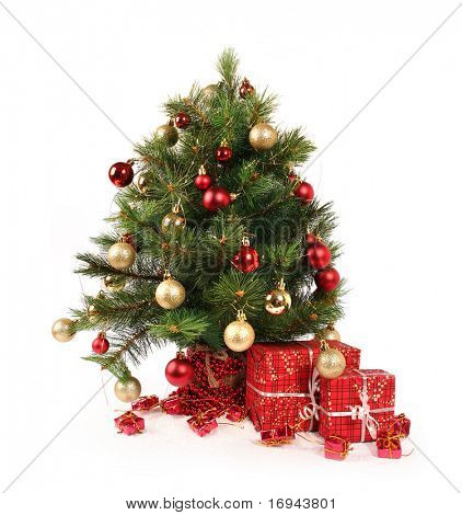 christmas tree on white background
