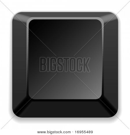 vector blank black key
