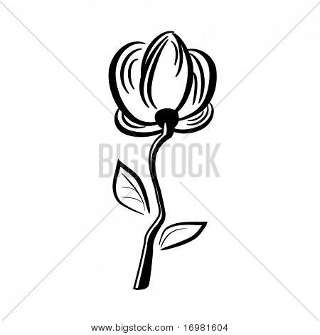 Hand drawn flower isolated on white. Vector.