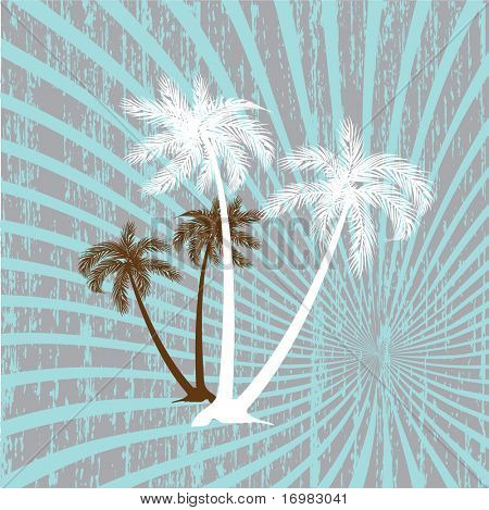 summer vector background with palms